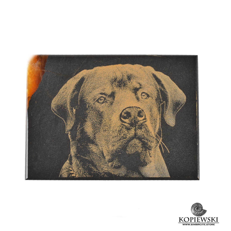 Симбирцитовый магнит с гравировкой Собака