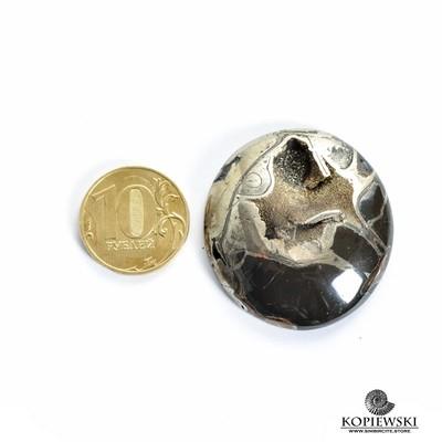 Аммонитовая жеода 40*37*8 мм