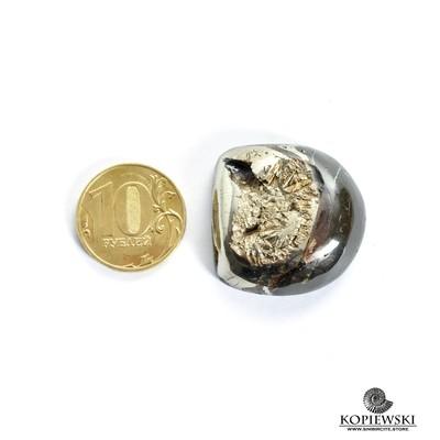 Аммонитовая жеода 30*30*10 мм