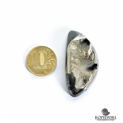Аммонитовая жеода 50*25*10 мм