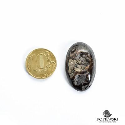 Аммонитовая жеода 35*20*10 мм