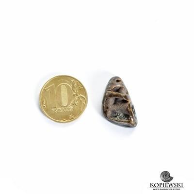 Аммонитовая жеода 25*15*7 мм