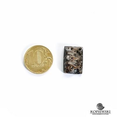 Аммонитовая жеода 20*15*5 мм