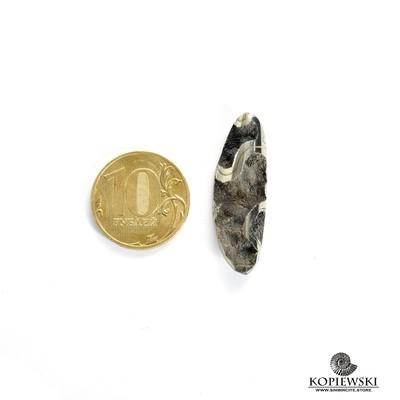 Аммонитовая жеода 35*10*5 мм