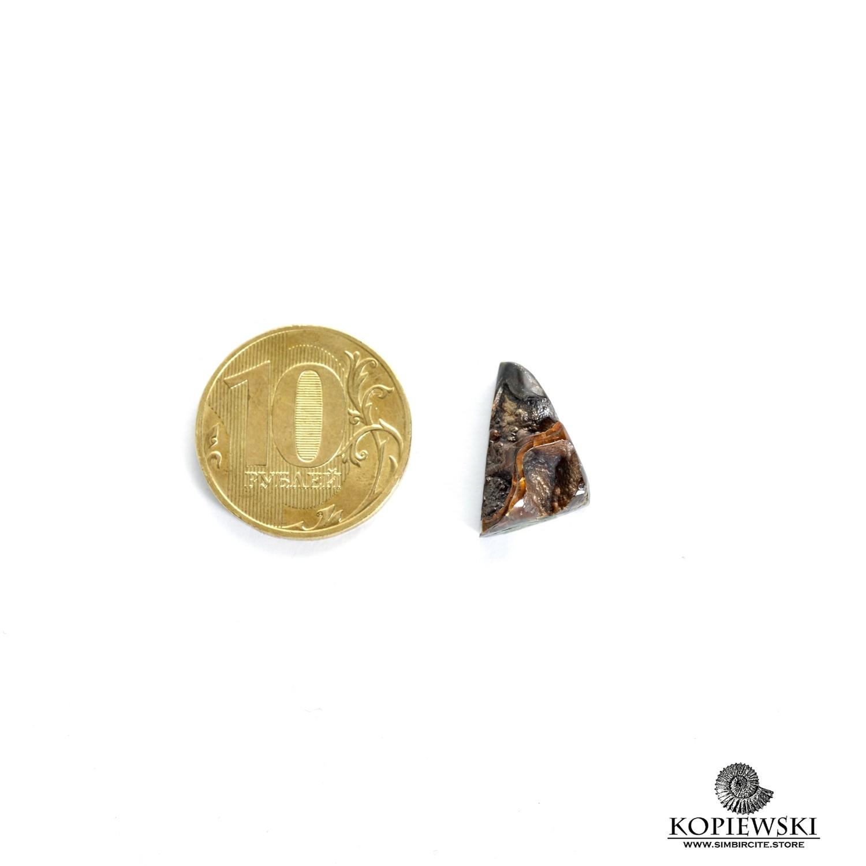 Аммонитовая жеода 15*10*5 мм