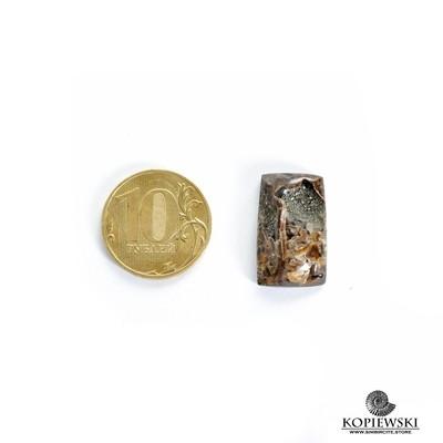 Аммонитовая жеода 22*15*5 мм