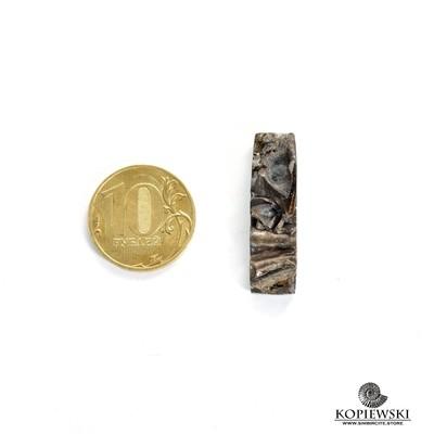 Аммонитовая жеода 38*8*5 мм