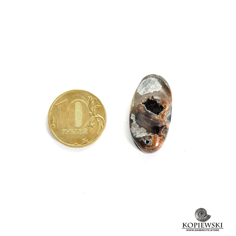 Аммонитовая жеода 30*15*5 мм