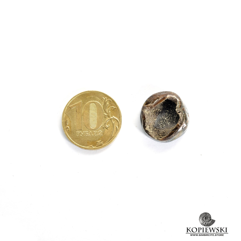 Аммонитовая жеода 20*20*5 мм