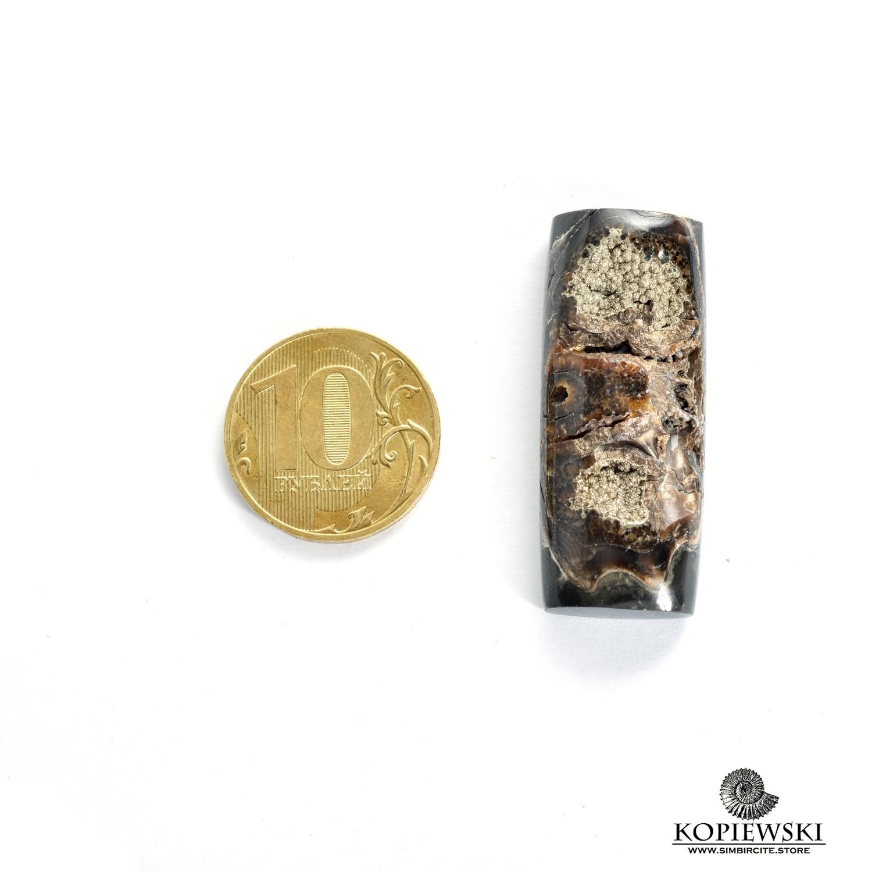 Аммонитовая жеода 40*15*5 мм