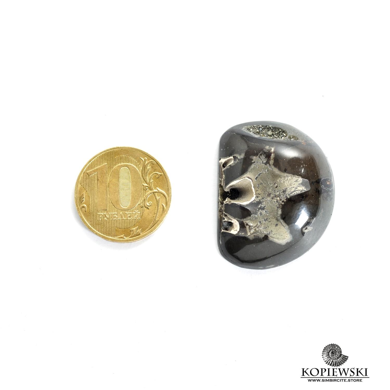 Аммонитовая жеода 33*25*10 мм