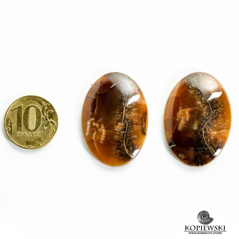 Пара Аммонитовый Симбирцит 40*25*3 мм