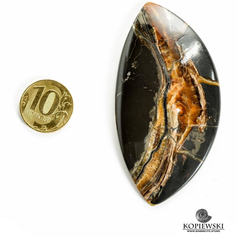Аммонитовый симбирцит 85*42*3 мм