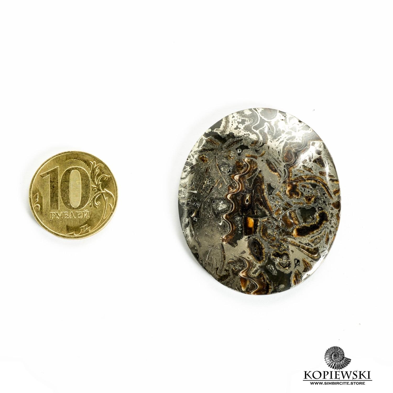 Аммонитовый симбирцит 45*40*3 мм
