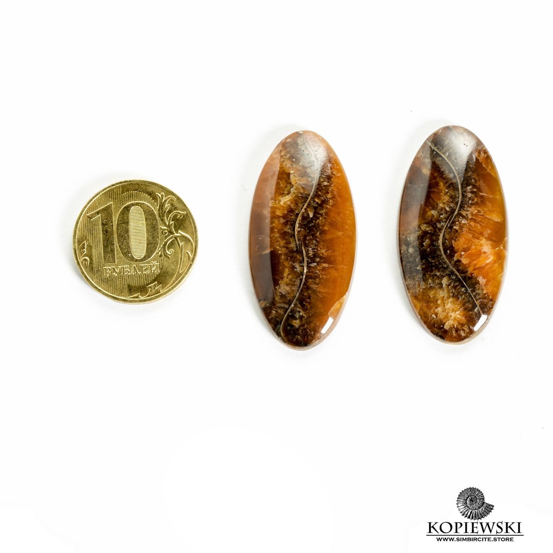 Пара Аммонитовый Симбирцит 40*20*3 мм