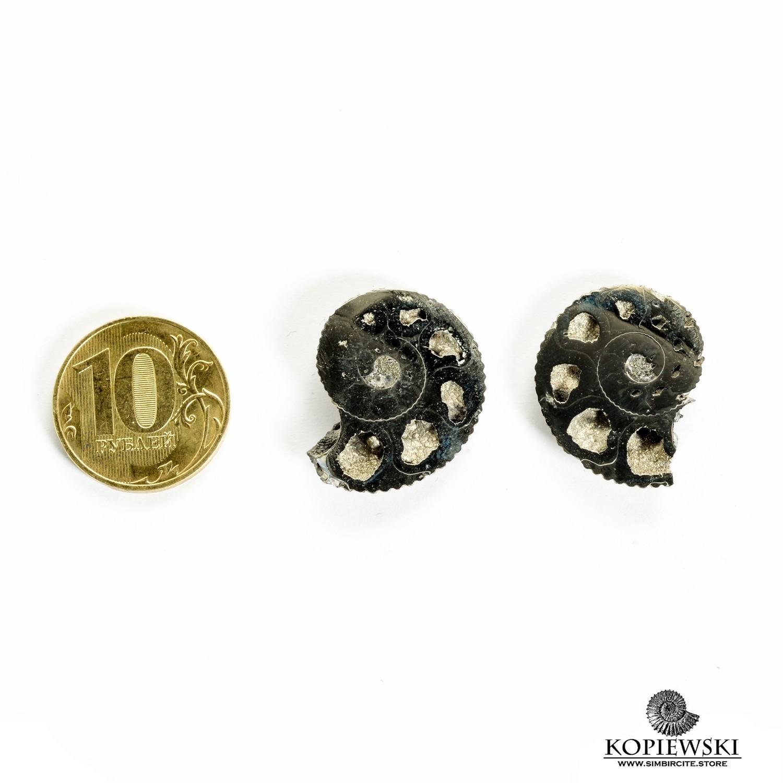 Пара Аммонитовые Жеоды 25*25*3 мм