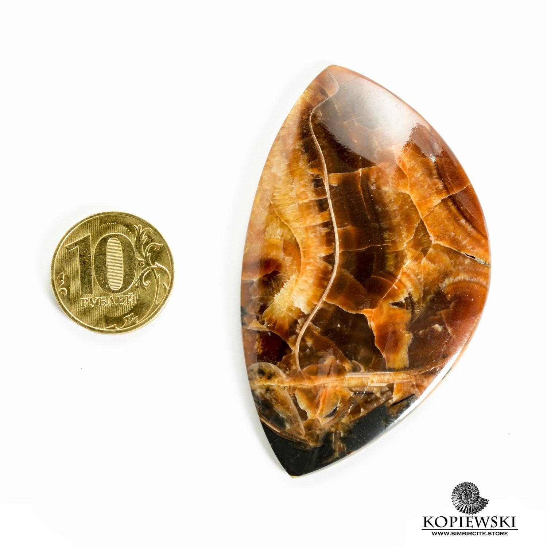 Аммонитовый симбирцит 75*45*3 мм