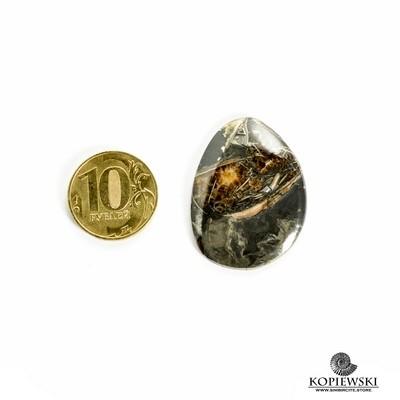Аммонитовый симбирцит 37*27*3 мм