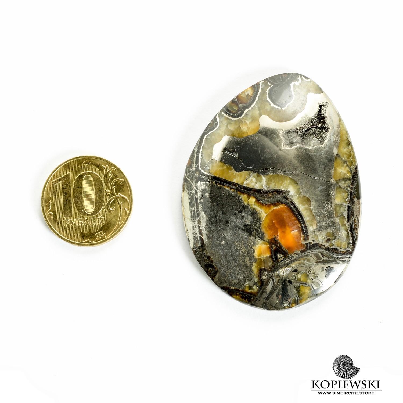 Аммонитовый симбирцит 57*42*3 мм