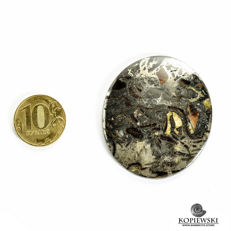 Аммонитовый симбирцит 50*45*3 мм