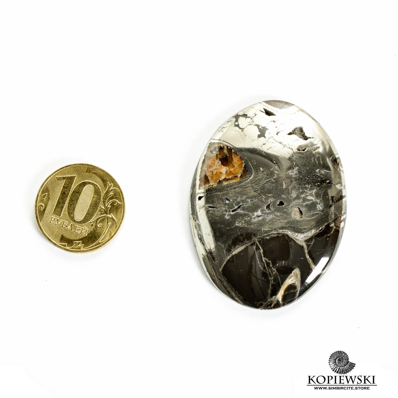 Аммонитовый симбирцит 50*40*3 мм