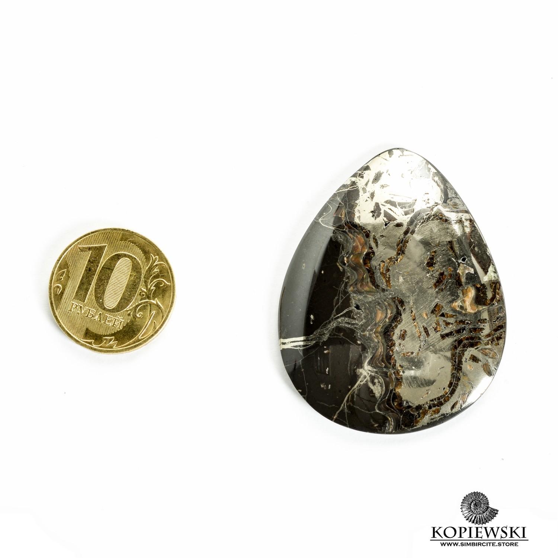 Аммонитовый симбирцит 45*35*3 мм