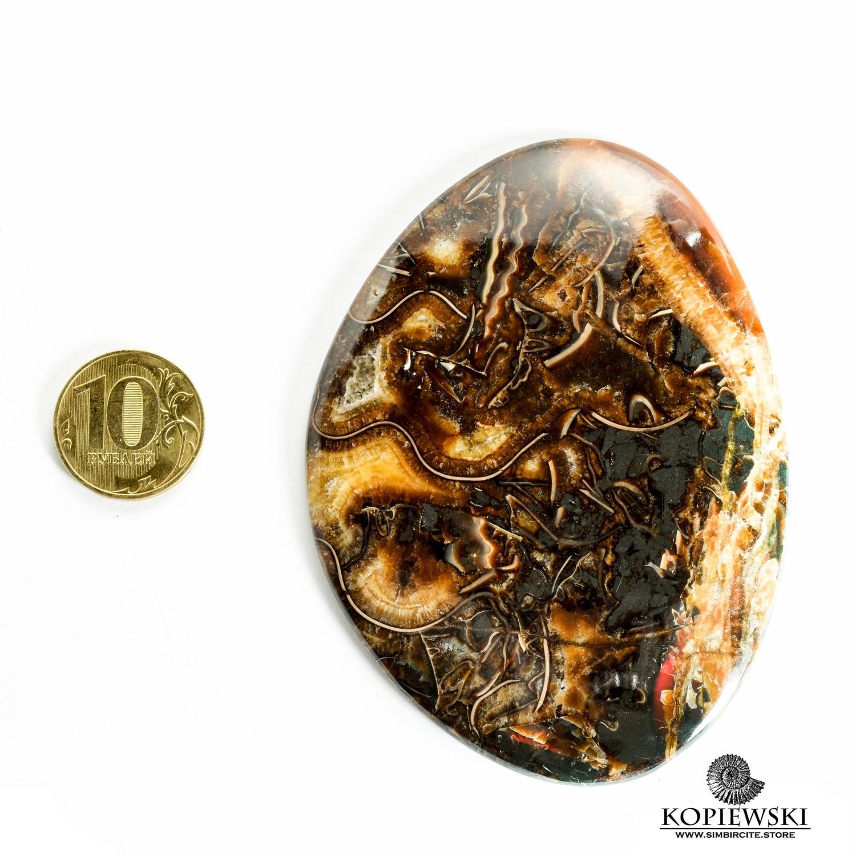 Аммонитовый симбирцит 90*65*4 мм