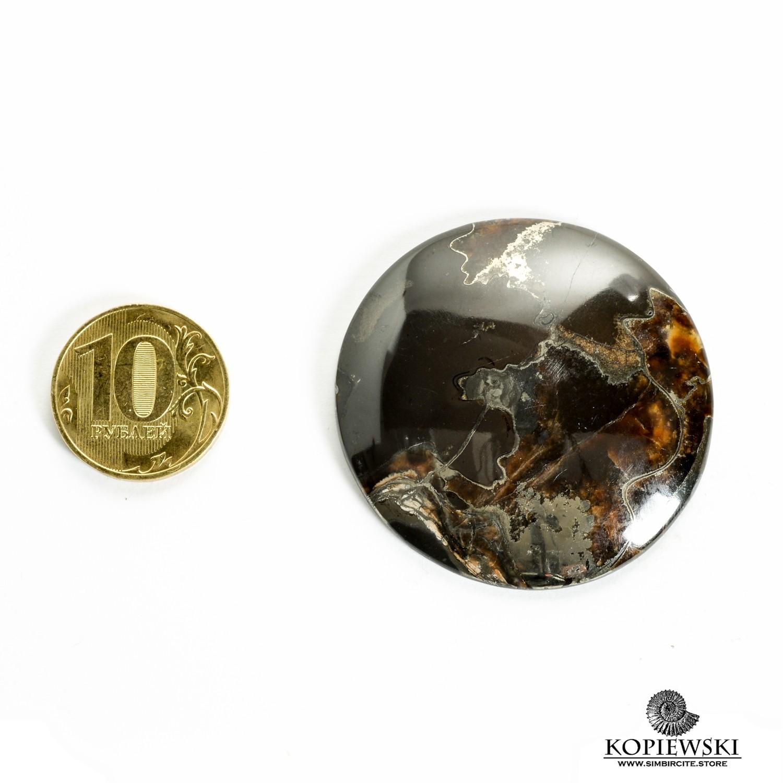 Аммонитовый симбирцит 45*45*3 мм