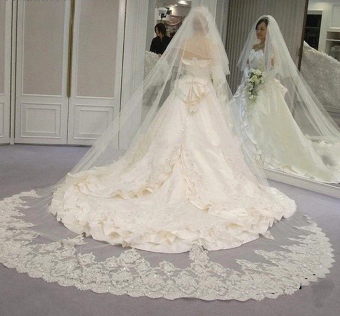 White/Ivory 2 Tiers Blusher Cover Face Cathedral Shining Sequined Lace Wedding Veil with Comb