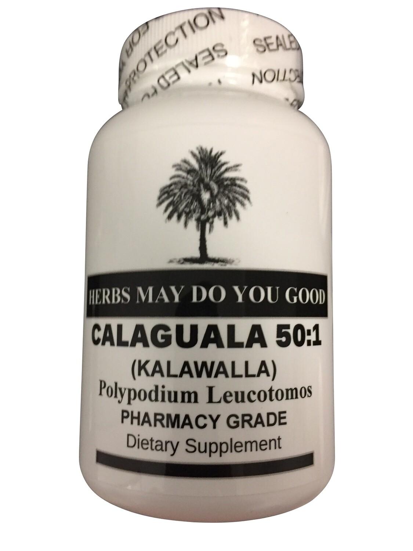 Calaguala 50:1 500 mg 100 Capsules Kalawalla Polypodium Leucotomos