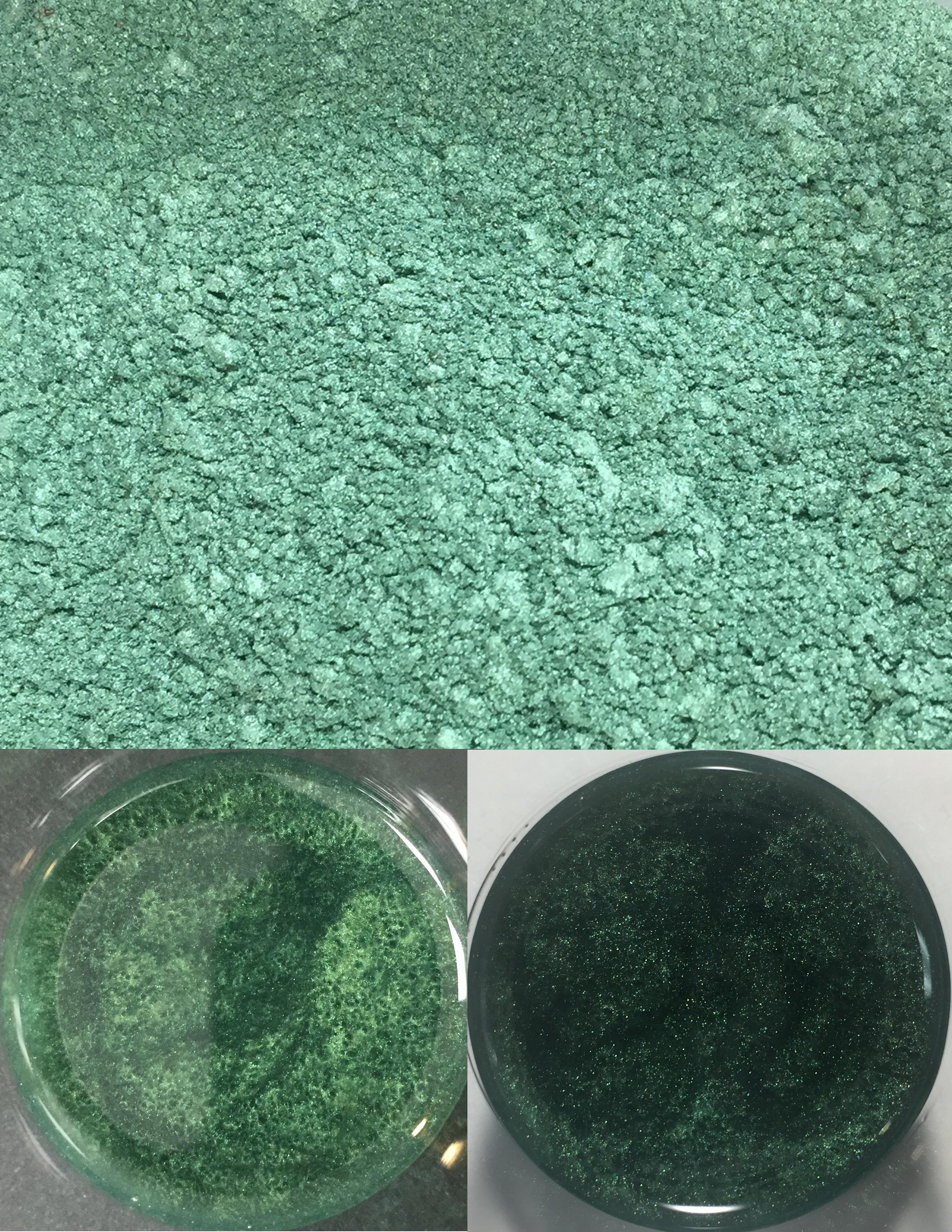 metallic pigments forest green/pigments métalliques vert forêt 00029