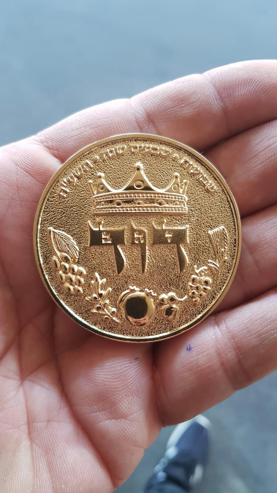 HALF SHEKEL KING DAVID COIN - gold plated 00009