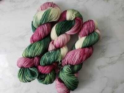 Hummingbird Hand Dyed Yarn