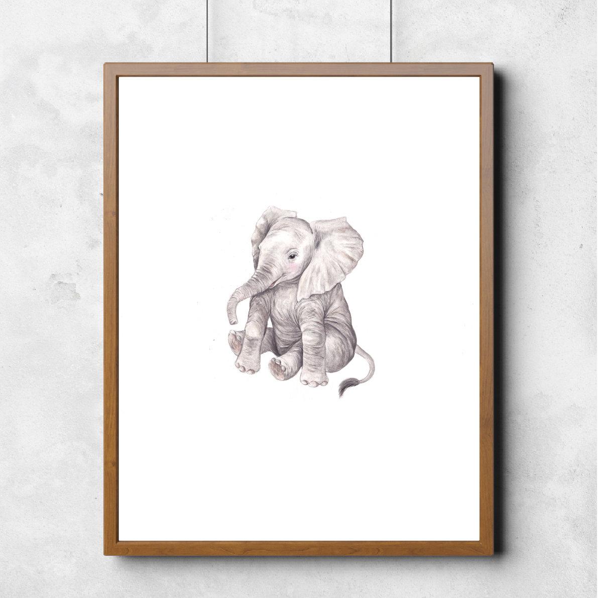 Baby Elephant 00006