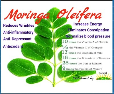 MORINGA OLEIFERA - THE MIRACLE TREE