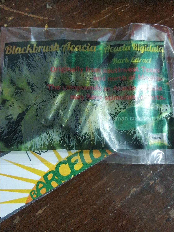 Blackbrush Acacia Capsules - Vachellia Rigidula Bark Extract Capsules