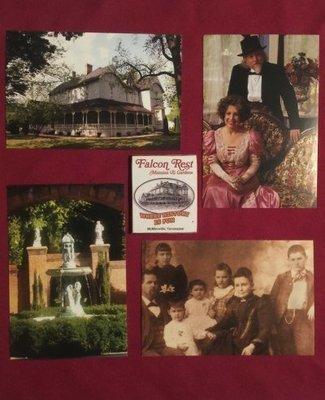 Falcon Rest Magnet/Postcards Set