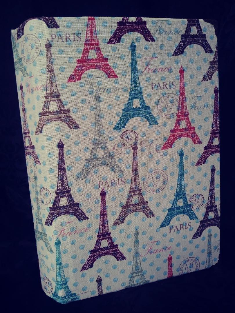 Paris in Blue & Brown cover