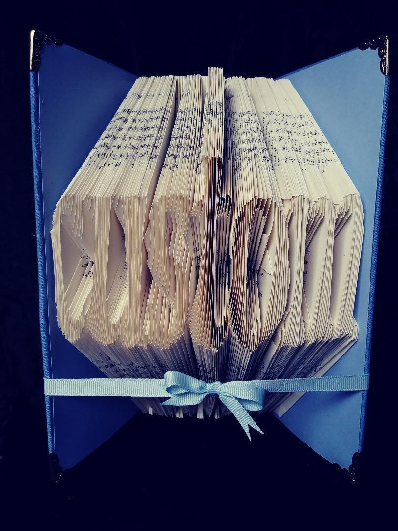 CUSTOM BOOK 0