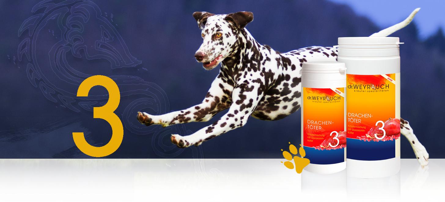 Dr.Weyrauch Drachentöter Nr. 3 Hund 00180