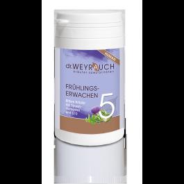 Dr.Weyrauch Frühlingserwachen Nr.5, Human 00202