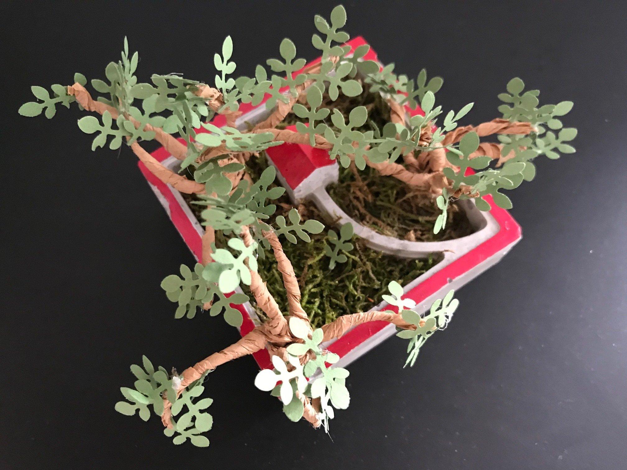 Atelier Jardin miniature en papier - Jeudi 10 janvier - de 20h à 22h. 00005