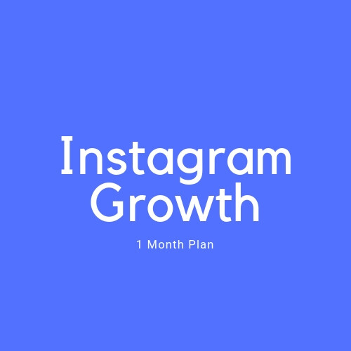 Instagram Growth 1 Month