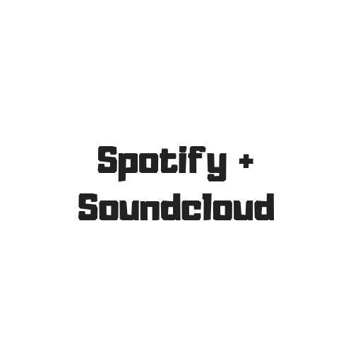 Spotify & Soundcloud Promotion