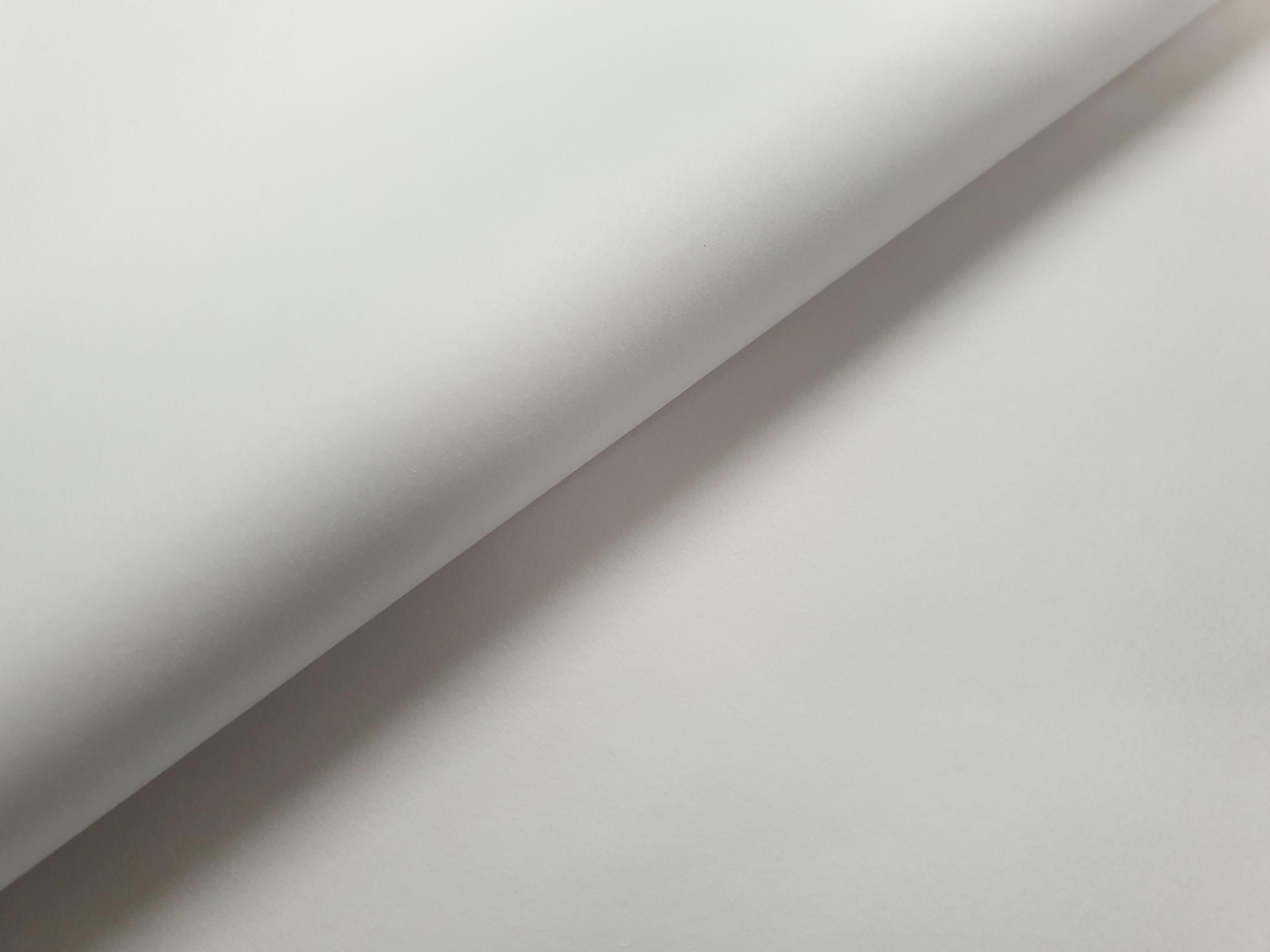 Paper Tissue No. 1 - White (25 sheets) TP01