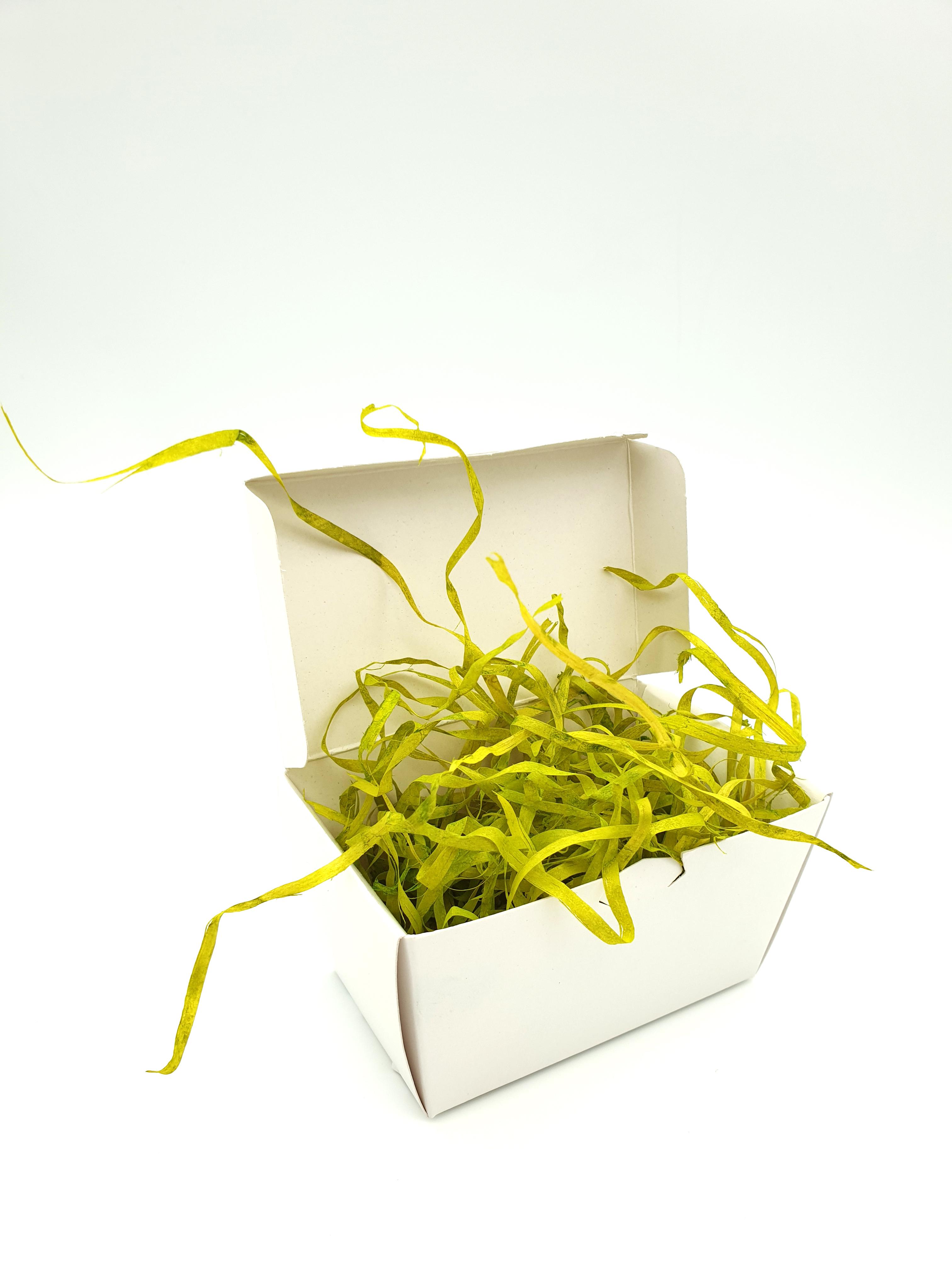 Wood Wool 100g Fine - Lime Green