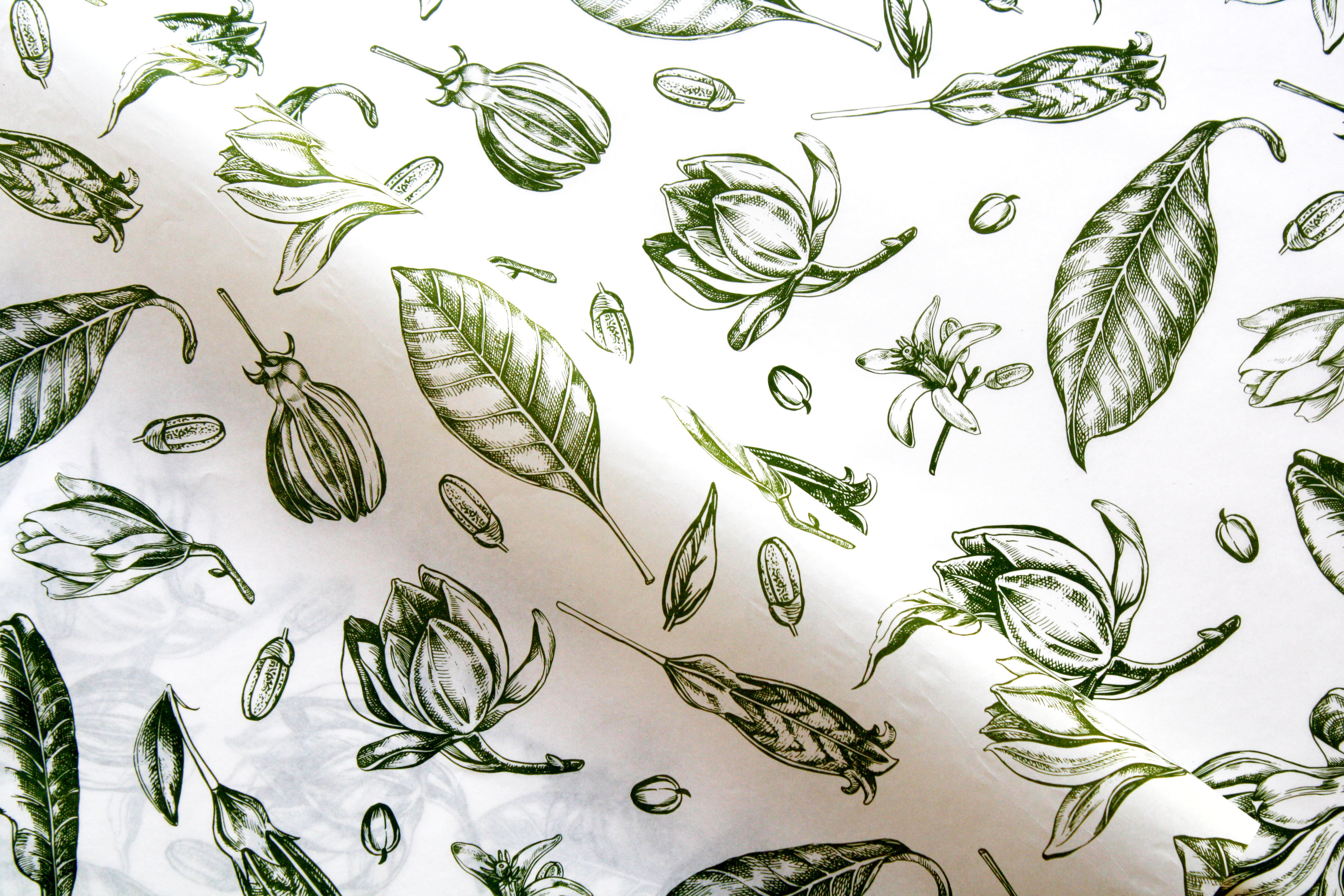Tissue Paper- Vintage Flowers - Olive On White (Qty 25) TPVFO