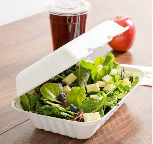 E - Compostable Clamshell Box 1000ml - No Division (Qty 50)