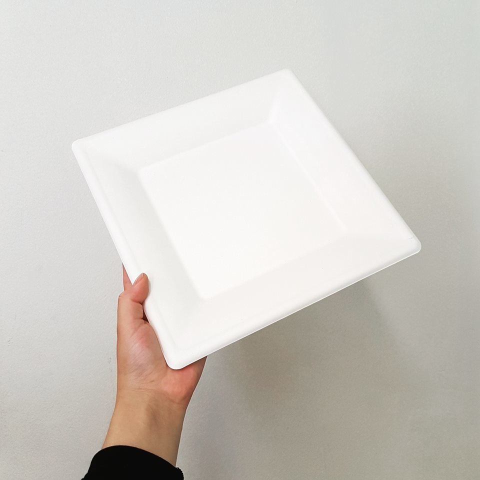 E - EcoWare Compostable Plate Square 26cm (Qty 50) BDG0156