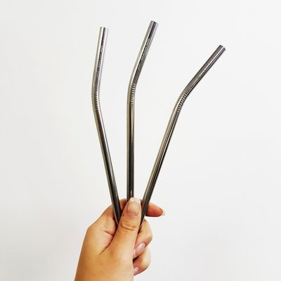 Stainless Steel Straw Bendy+ Brush Silver (ea)